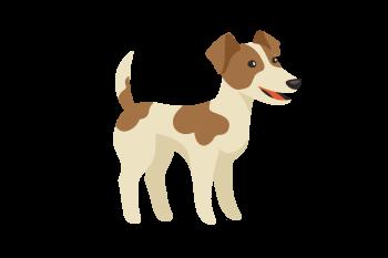 welpencoach-at-hundetraining-hundeverhaltensberatung-welpenkurse-wien-burgendland-und-online
