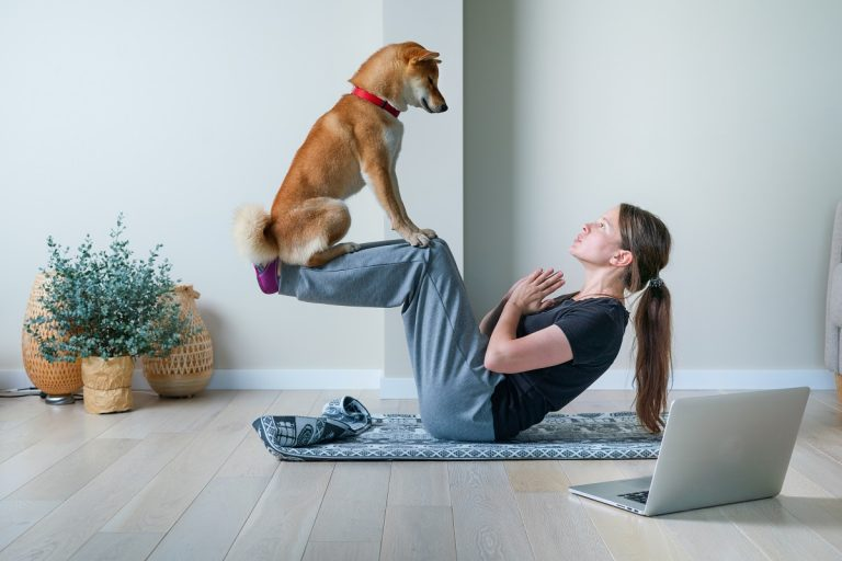 achtsamkeit-im-hundetraining