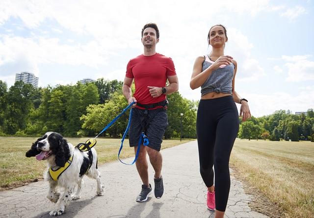 wie-man-richtig-mit-dem-hund-joggen-oder-laufen-geht